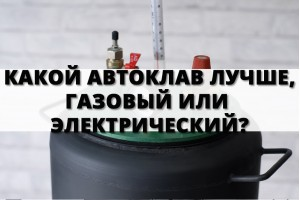 Какой автоклав лучше, газовый или электрический?