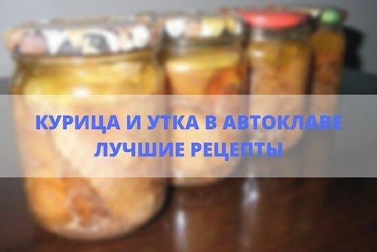Рецепты куриной тушенки в автоклаве в домашних условиях